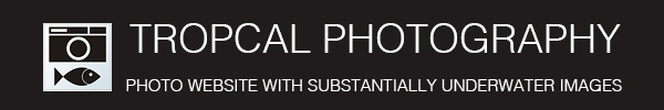 Tropcal Photography